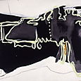 SWEET DREAMS-emulsion on canvas,152x242cm