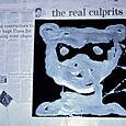 the real culprit,oil on canvas,35x35cm