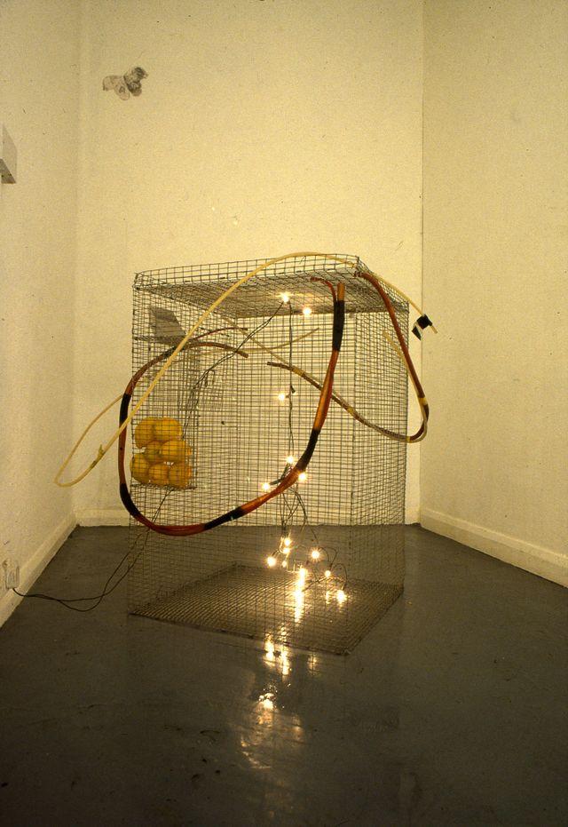 lemoncage installationshot'97