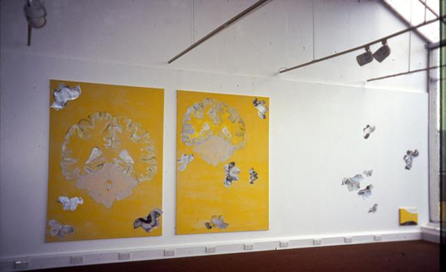 Flightpath 2-installationshot,'99