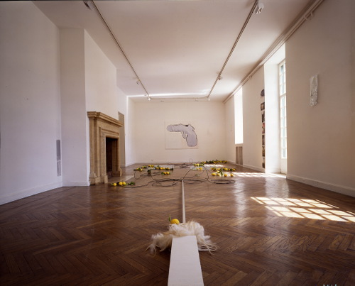 LEMONS ARE NOT ALWAYS RED, installationshot BSR